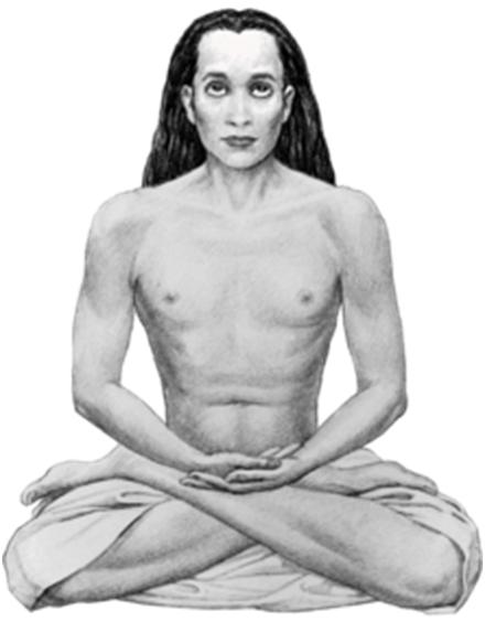 MAHAVATARBABAjI IMAGE